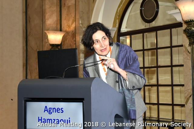 Agnès HAMZAOUI